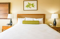 Two-Bedroom Premium Condo