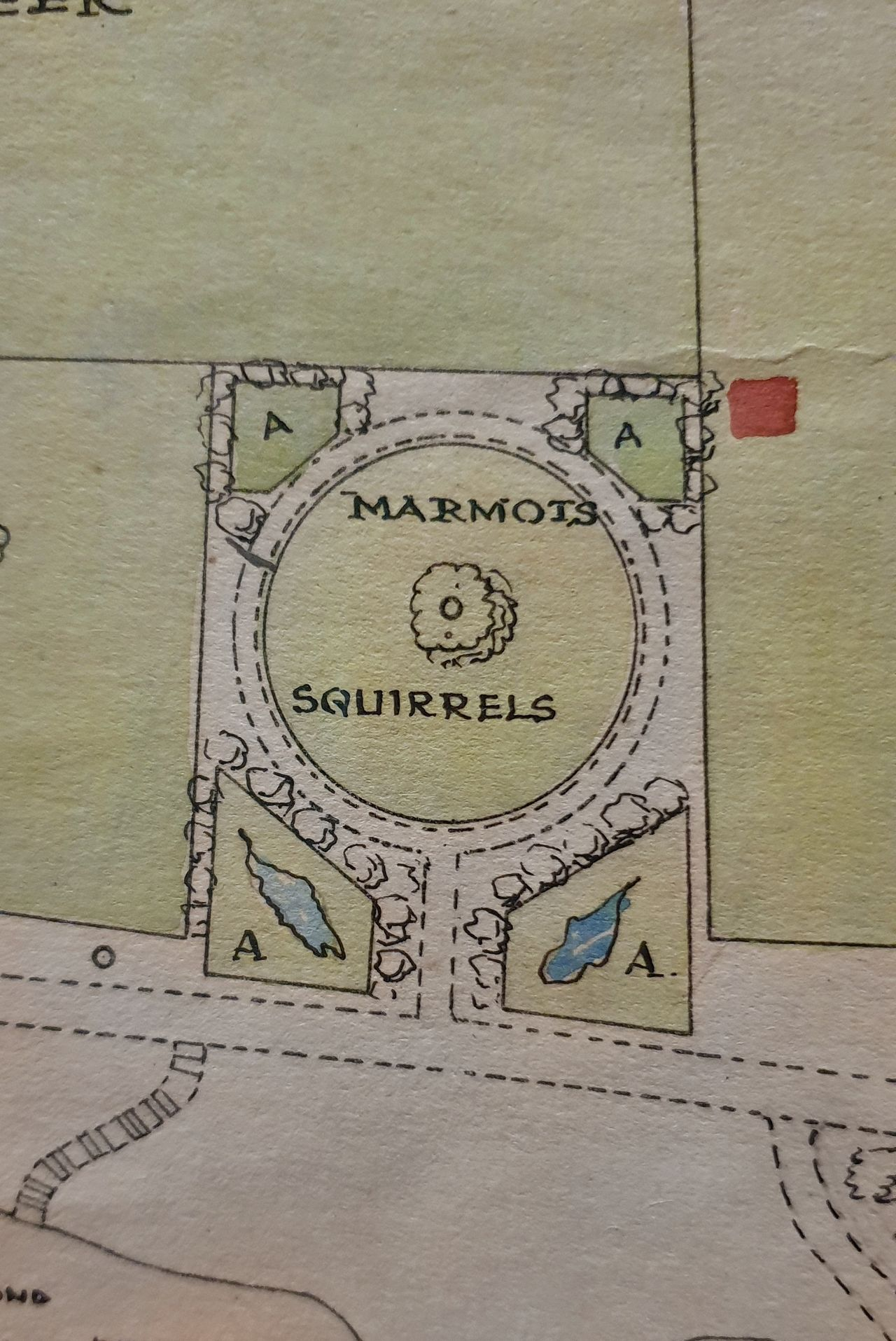 Close-up of the plan for the Scottish Zoological Garden. Sections of the plan are coloured yellow, green, red. In squares and other shapes across the plan, denoting which animals are where, animal names are written.  This one shows a circular area with marmots and squirrels written on it.