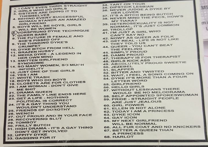 """Example of a flyer for mail order t-shirts from 2000. A list of descriptions with numbers, such as """"18. Boys who do boys"""" or """"10. Dyke bitch from hell""""."""