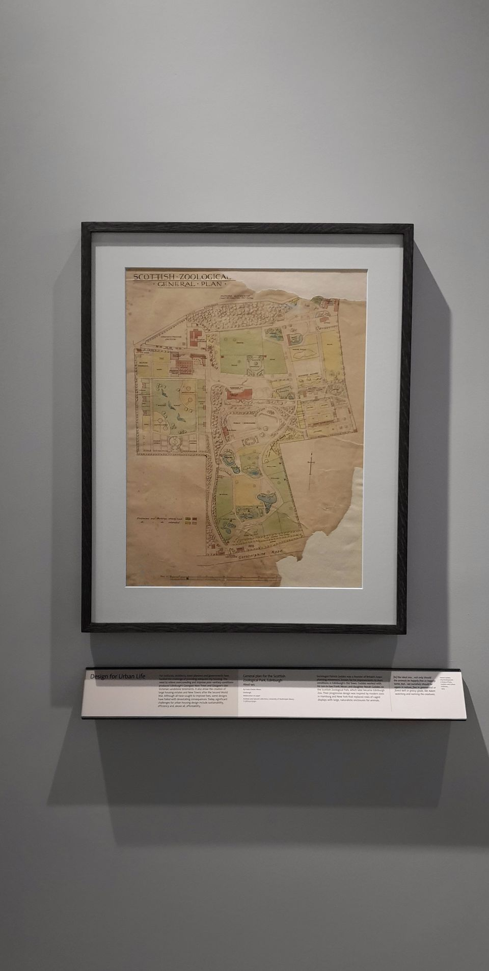 A grey wall upon which hangs an archival plan of the Scottish Zoological Garden. As a result of its age, it shows some wear and tear. Underneath the framed plan is a long panel of interpretation.