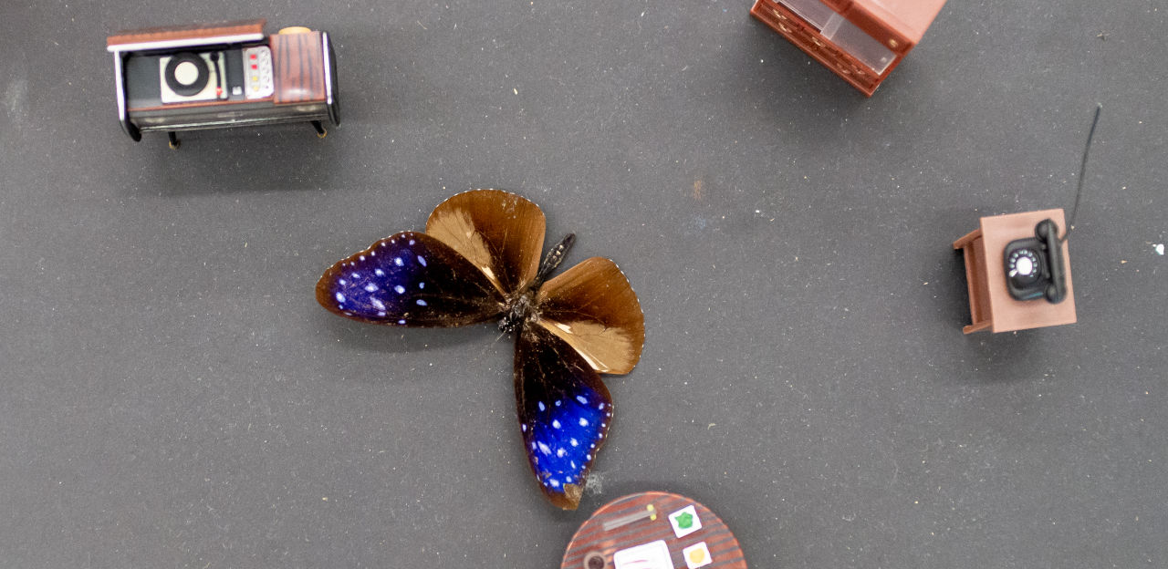 A grey table top with small doll-house furniture on it and a pinned butterfly.