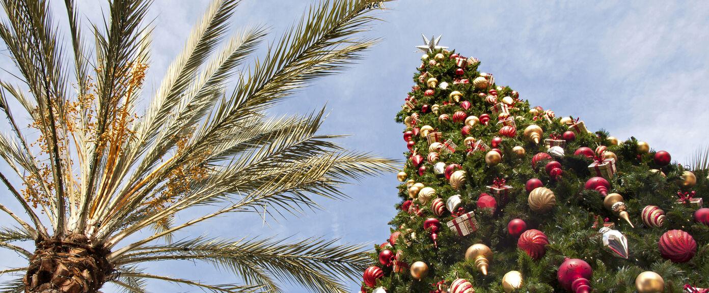 Luxury Christmas Holidays