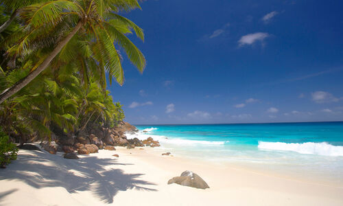 Beach in the Indian Ocean