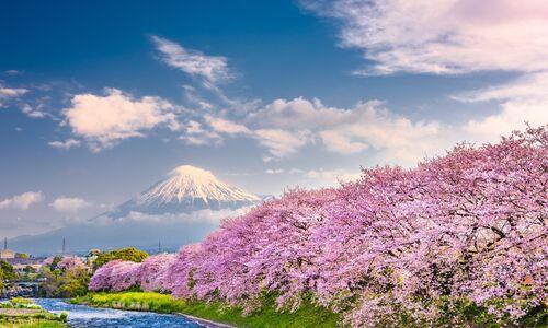Hakone & Mount Fuji