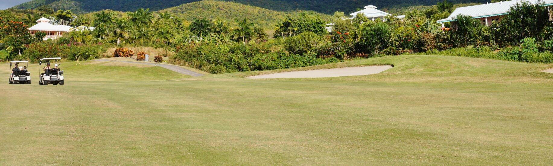 Nevis Golf