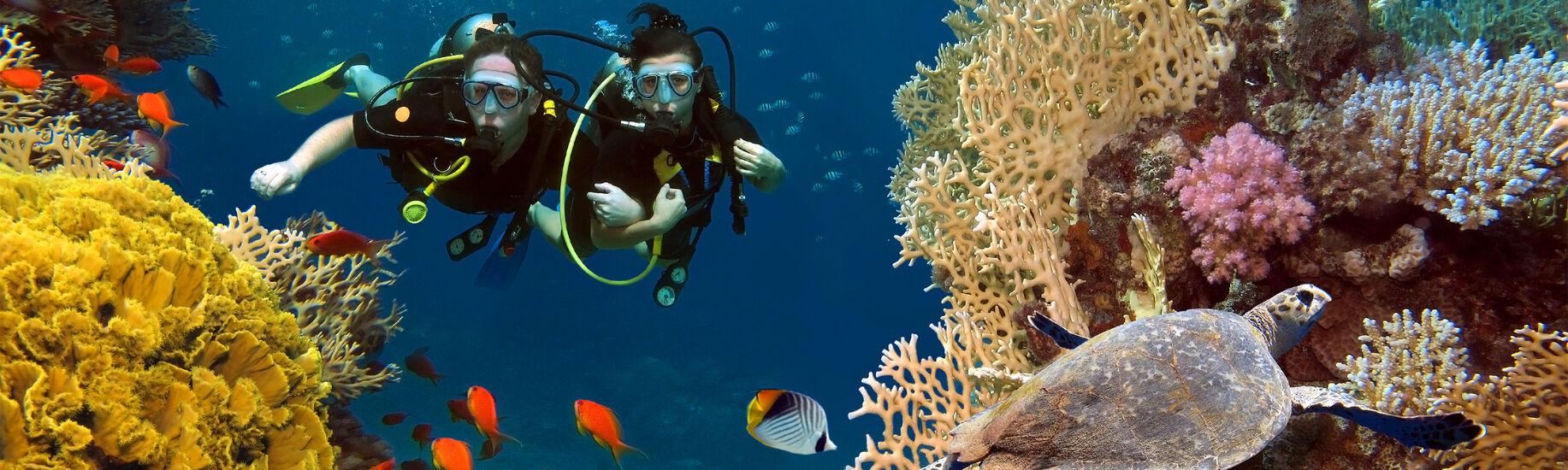 Indian Ocean Diving