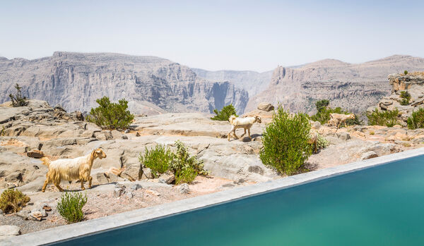 Pool With Cliff View