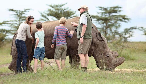 Rhino Interaction