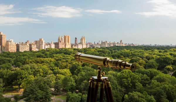 Telescope View of Central Park