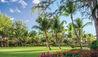 Lush Green Tropical Garden