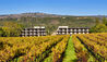 Las Alcobas, a Luxury Collection Hotel, Napa Valley : Exterior and Vineyards