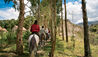 Paso Horse-trekking Excursion