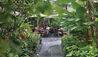 Mandarin Oriental, Singapore : Melt Cafe Garden Terrace