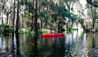 The Ritz-Carlton Orlando, Grande Lakes : On-site Kayaking On Shingle Creek