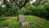Bisate Lodge : Dian Fossey Grave