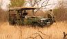 Mateya Safari Lodge : Game Drive