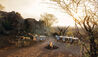 Madikwe Hills Private Game Lodge : Breakfast in the Bush
