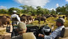 Royal Malewane : Wildlife Sightings During a Game Drive