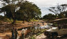 Singita Faru Faru Lodge : Game Drive Stop Off Point