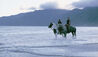 Outdoor Recreation - Horse Riding On The Beach