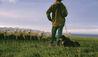 Wharekauhau Country Estate : Shepherd Working On The Farm