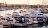 The Ritz-Carlton, Marina Del Rey : Marina