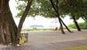 Jacaranda : View of the Beach from the Villa