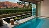Leeu Estates : Leeu Spa - Plunge Pool