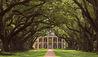Oak Alley Plantation : Main House Entrance