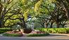 Oak Alley Plantation : Plantation Tree-lined Entrance
