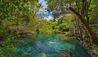Tortuga Bay Puntacana Resort & Club : Reserva Ecologica Ojos Indigenas