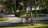 Tortuga Bay Bicycle Walking Trails