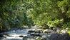 Four Seasons Resort Bali at Sayan : Ayung River