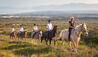 Grootbos Private Nature Reserve : Horse Riding Reserve