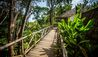 Lapa Rios Lodge : Bridge