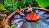 Nayara Resort, Spa & Gardens : Couple In Jacuzzi