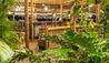 Finca Rosa Blanca Coffee Plantation Resort : Bar Area