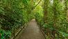 Finca Rosa Blanca Coffee Plantation Resort : Nature Walk