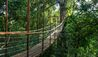 The Datai Langkawi : Canopy Walk Bridge