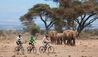 Mountain Biking Past Elephants