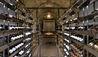 The Brando : Wine Cellar