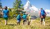 Chalet Zermatt Peak : Family