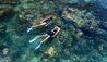 Six Senses Krabey Island : Snorkeling