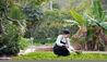 Six Senses Ninh Van Bay : Organic Garden