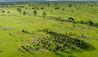 Roho ya Selous : Selous Buffalo