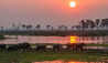 Roho ya Selous : Sunset Over River