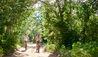 Sanctuary Chobe Chilwero : Sanctuary Chobe Chilwero: Cycling