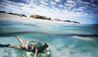 Sal Salis Ningaloo Reef : Snorkelling