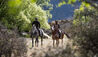 The Lindis : Horse Riding