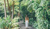 Byron at Byron, a Crystalbrook Collection Resort : Rainforest Walkway
